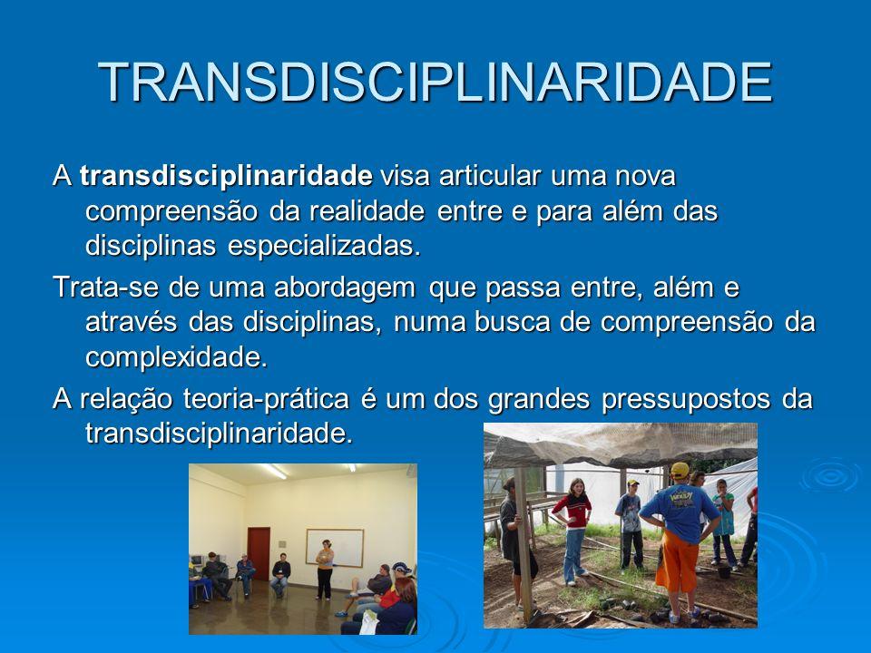TRANSDISCIPLINARIDADE A transdisciplinaridade visa articular uma nova compreensão da realidade entre e para além das disciplinas especializadas. Trata