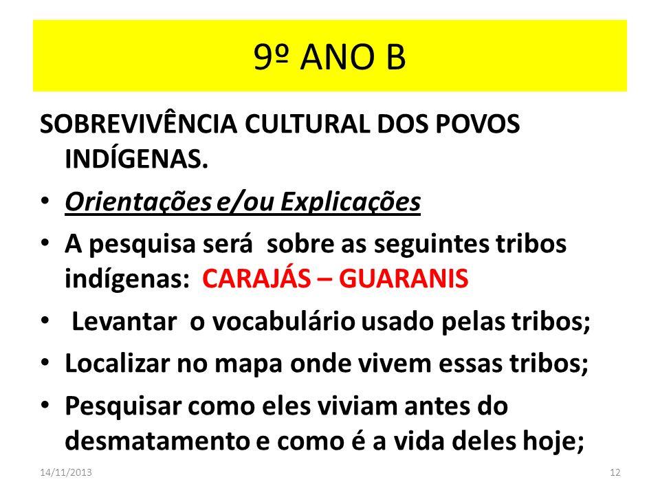 9º ANO B SOBREVIVÊNCIA CULTURAL DOS POVOS INDÍGENAS. Orientações e/ou Explicações A pesquisa será sobre as seguintes tribos indígenas: CARAJÁS – GUARA