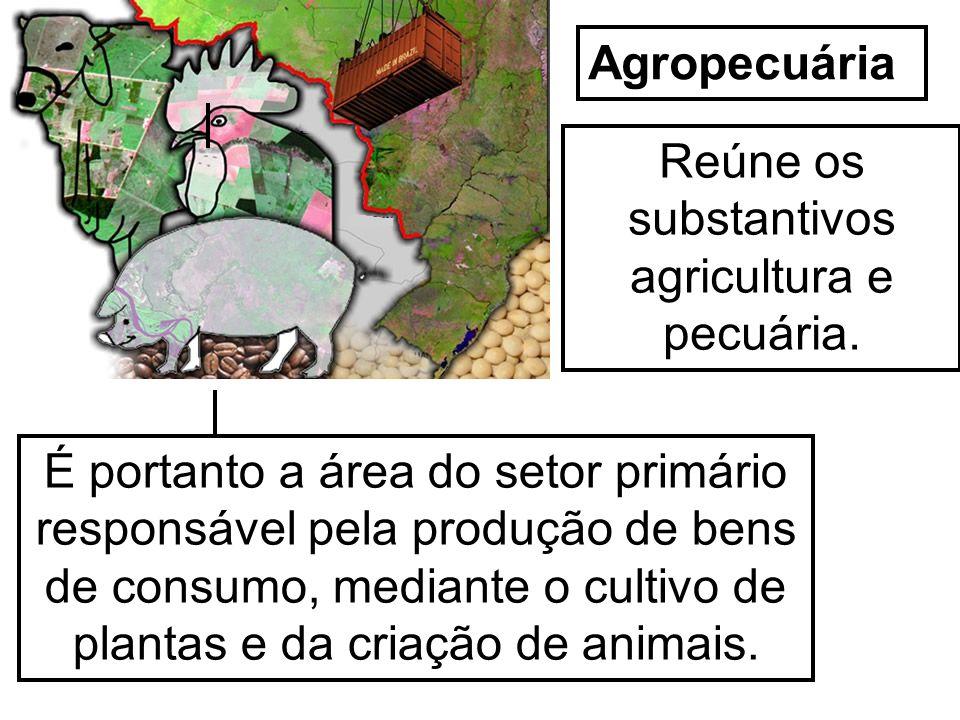 Prof. Wilton Oliveira Agropecuária Reúne os substantivos agricultura e pecuária. É portanto a área do setor primário responsável pela produção de bens