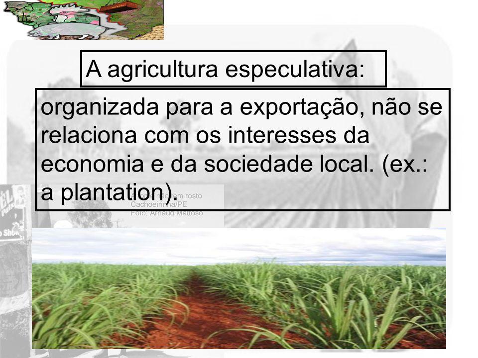 Prof. Wilton Oliveira A agricultura especulativa: organizada para a exportação, não se relaciona com os interesses da economia e da sociedade local. (
