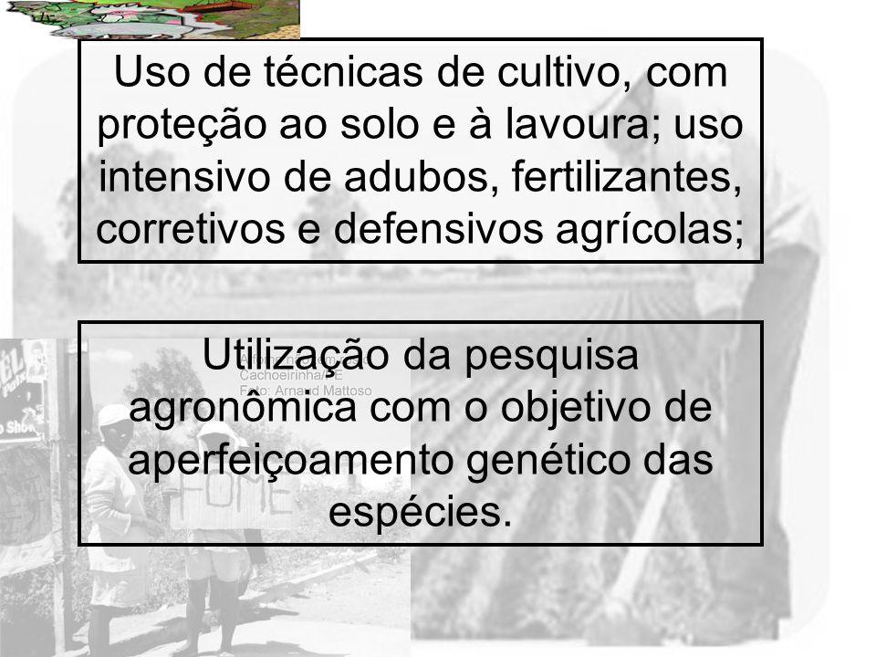 Prof. Wilton Oliveira Uso de técnicas de cultivo, com proteção ao solo e à lavoura; uso intensivo de adubos, fertilizantes, corretivos e defensivos ag