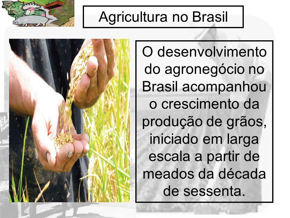 Agricultura no Brasil O desenvolvimento do agronegócio no Brasil acompanhou o crescimento da produção de grãos, iniciado em larga escala a partir de m
