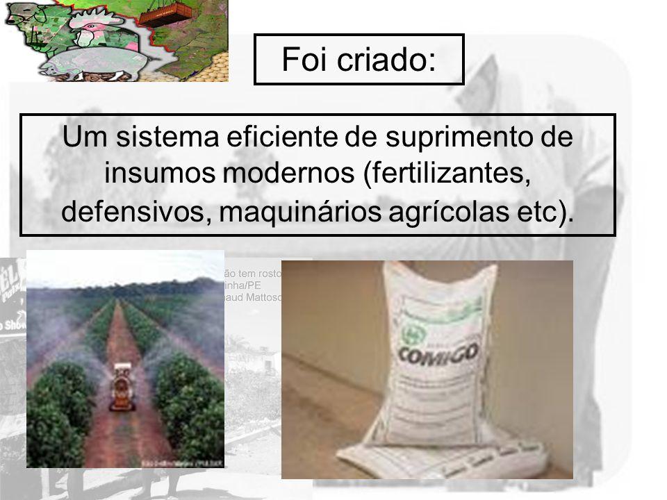 Prof. Wilton Oliveira Um sistema eficiente de suprimento de insumos modernos (fertilizantes, defensivos, maquinários agrícolas etc). Foi criado: