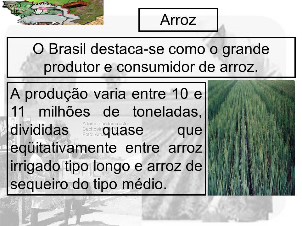 Prof. Wilton Oliveira Arroz O Brasil destaca-se como o grande produtor e consumidor de arroz. A produção varia entre 10 e 11 milhões de toneladas, div