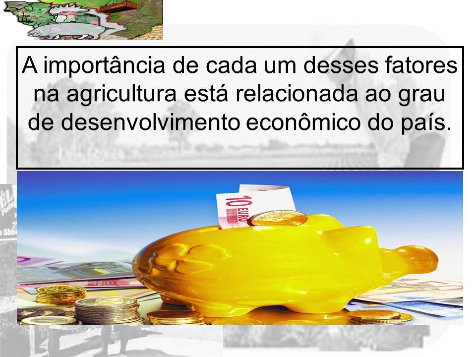 Prof. Wilton Oliveira A importância de cada um desses fatores na agricultura está relacionada ao grau de desenvolvimento econômico do país.