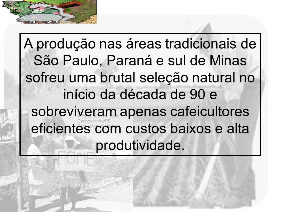 Prof. Wilton Oliveira A produção nas áreas tradicionais de São Paulo, Paraná e sul de Minas sofreu uma brutal seleção natural no início da década de 9