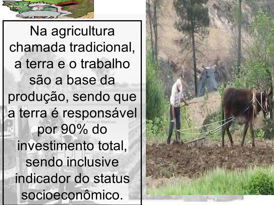 Prof. Wilton Oliveira Na agricultura chamada tradicional, a terra e o trabalho são a base da produção, sendo que a terra é responsável por 90% do inve