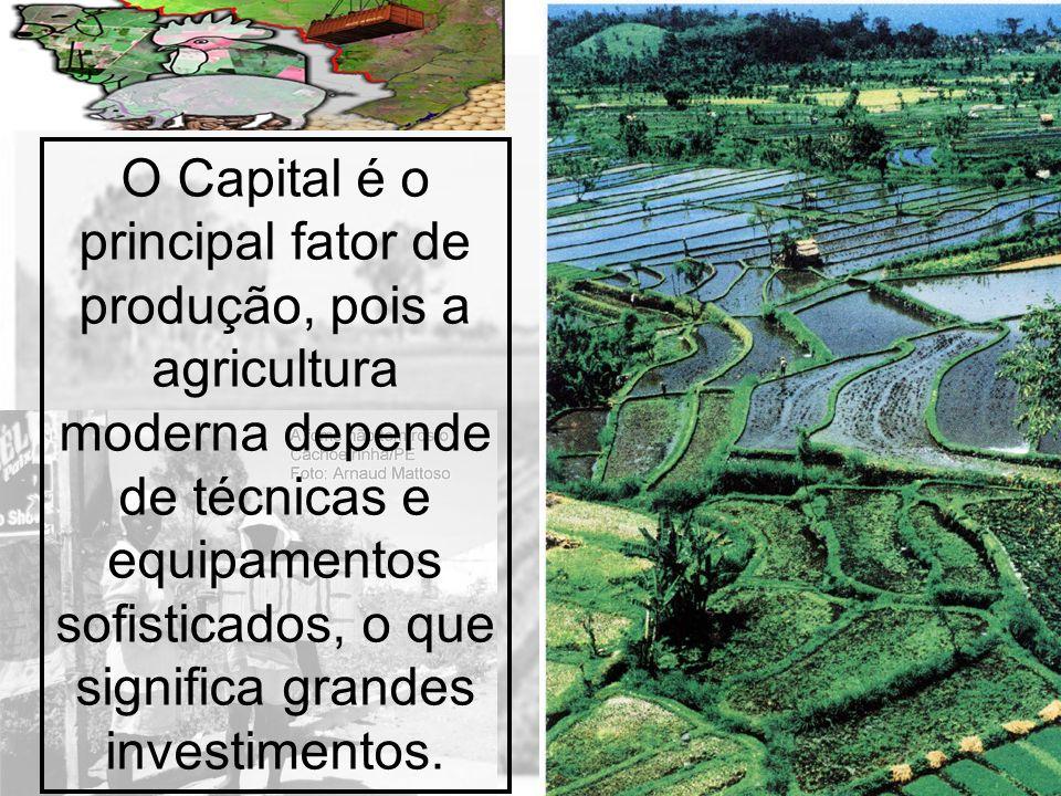 Prof. Wilton Oliveira O Capital é o principal fator de produção, pois a agricultura moderna depende de técnicas e equipamentos sofisticados, o que sig