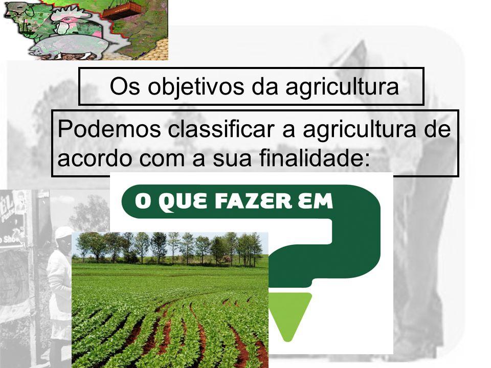 Prof. Wilton Oliveira Os objetivos da agricultura Podemos classificar a agricultura de acordo com a sua finalidade: