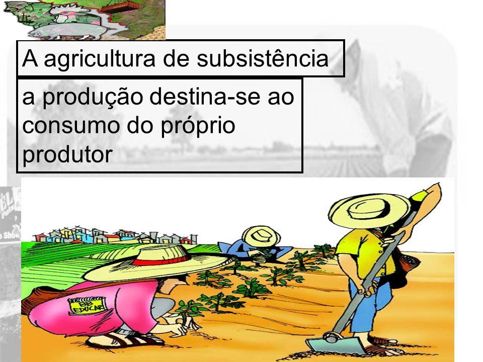 Prof. Wilton Oliveira A agricultura de subsistência a produção destina-se ao consumo do próprio produtor