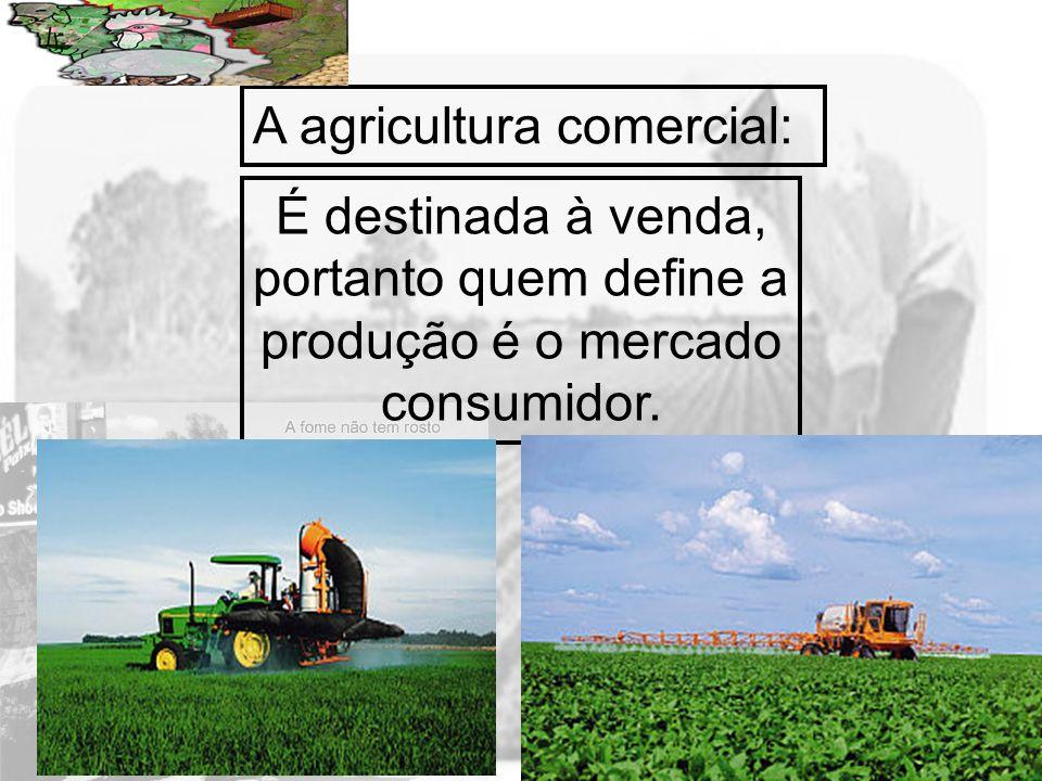 Prof. Wilton Oliveira A agricultura comercial: É destinada à venda, portanto quem define a produção é o mercado consumidor.