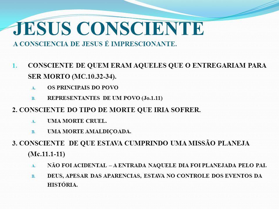 CONCLUSÃO A CONSCIENCIA DE CRISTO INDICA QUE : 1.