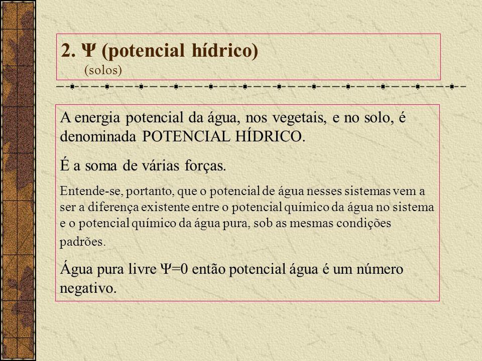 2. Ψ (potencial hídrico) (solos) A energia potencial da água, nos vegetais, e no solo, é denominada POTENCIAL HÍDRICO. É a soma de várias forças. Ente