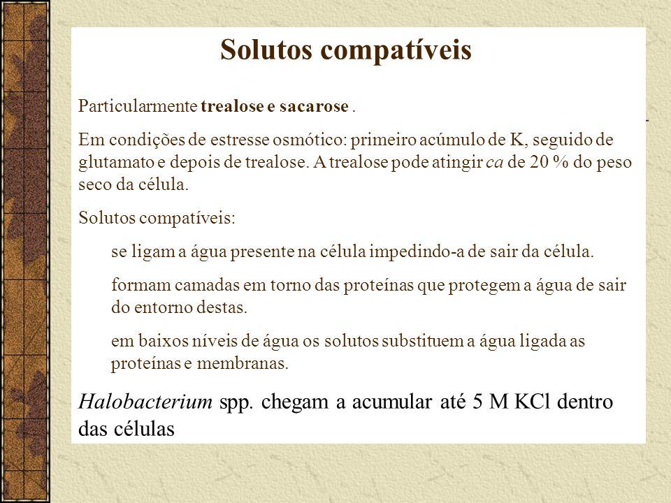 Solutos compatíveis Particularmente trealose e sacarose. Em condições de estresse osmótico: primeiro acúmulo de K, seguido de glutamato e depois de tr