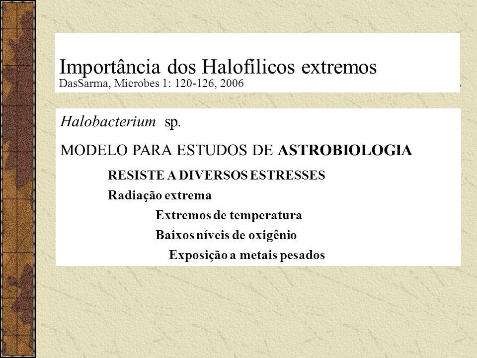 Importância dos Halofílicos extremos DasSarma, Microbes 1: 120-126, 2006 Halobacterium sp. MODELO PARA ESTUDOS DE ASTROBIOLOGIA RESISTE A DIVERSOS EST
