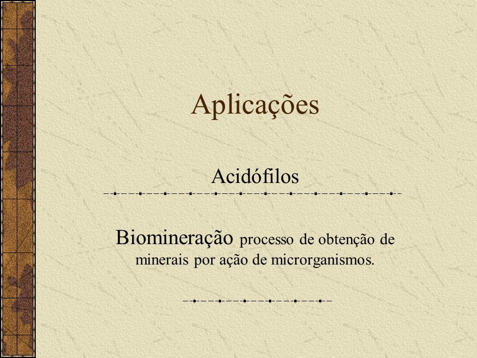 Aplicações Acidófilos Biomineração processo de obtenção de minerais por ação de microrganismos.
