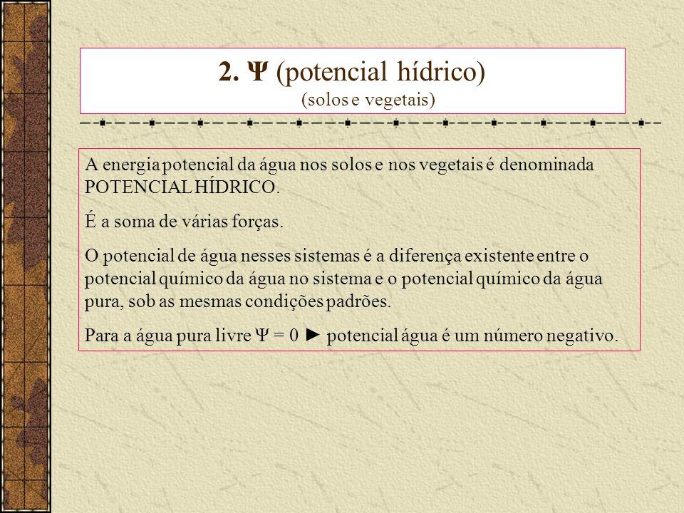 2. Ψ (potencial hídrico) (solos e vegetais) A energia potencial da água nos solos e nos vegetais é denominada POTENCIAL HÍDRICO. É a soma de várias fo