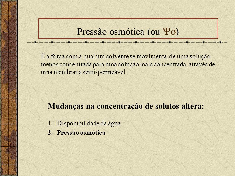 Pressão osmótica (ou Ψo ) Mudanças na concentração de solutos altera: 1.Disponibilidade da água 2.Pressão osmótica É a força com a qual um solvente se