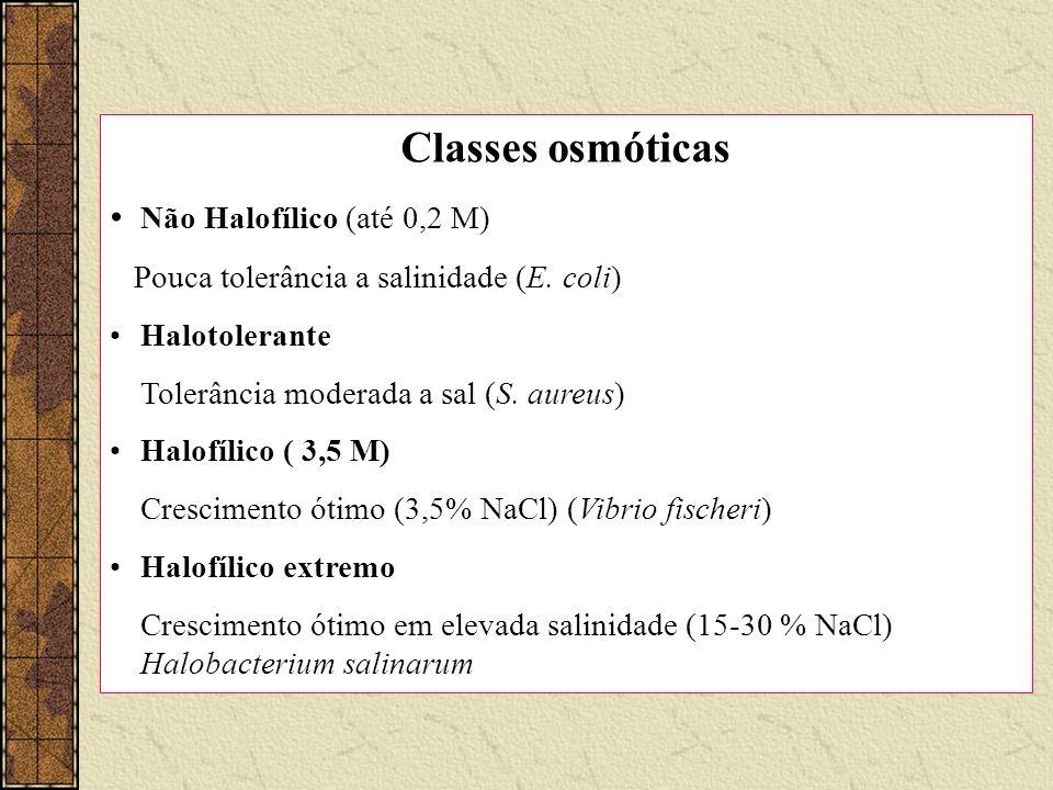 Classes osmóticas Não Halofílico (até 0,2 M) Pouca tolerância a salinidade (E. coli) Halotolerante Tolerância moderada a sal (S. aureus) Halofílico (