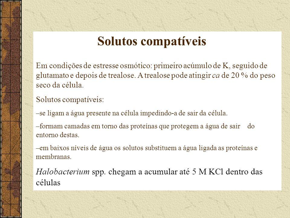 Solutos compatíveis Em condições de estresse osmótico: primeiro acúmulo de K, seguido de glutamato e depois de trealose. A trealose pode atingir ca de