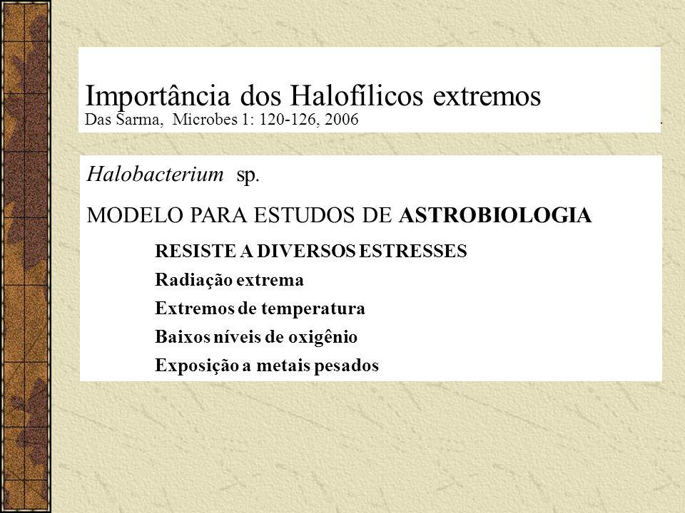 Importância dos Halofílicos extremos Das Sarma, Microbes 1: 120-126, 2006 Halobacterium sp. MODELO PARA ESTUDOS DE ASTROBIOLOGIA RESISTE A DIVERSOS ES
