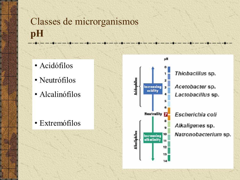 Classes de microrganismos pH Acidófilos Neutrófilos Alcalinófilos Extremófilos