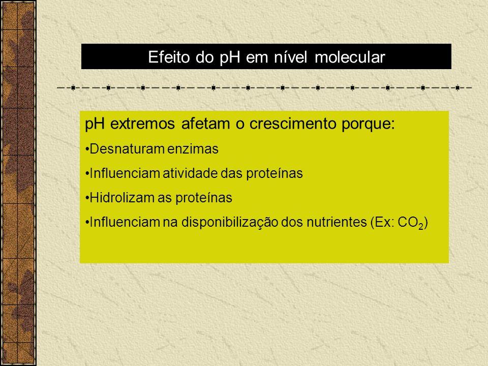 Efeito do pH em nível molecular pH extremos afetam o crescimento porque: Desnaturam enzimas Influenciam atividade das proteínas Hidrolizam as proteína