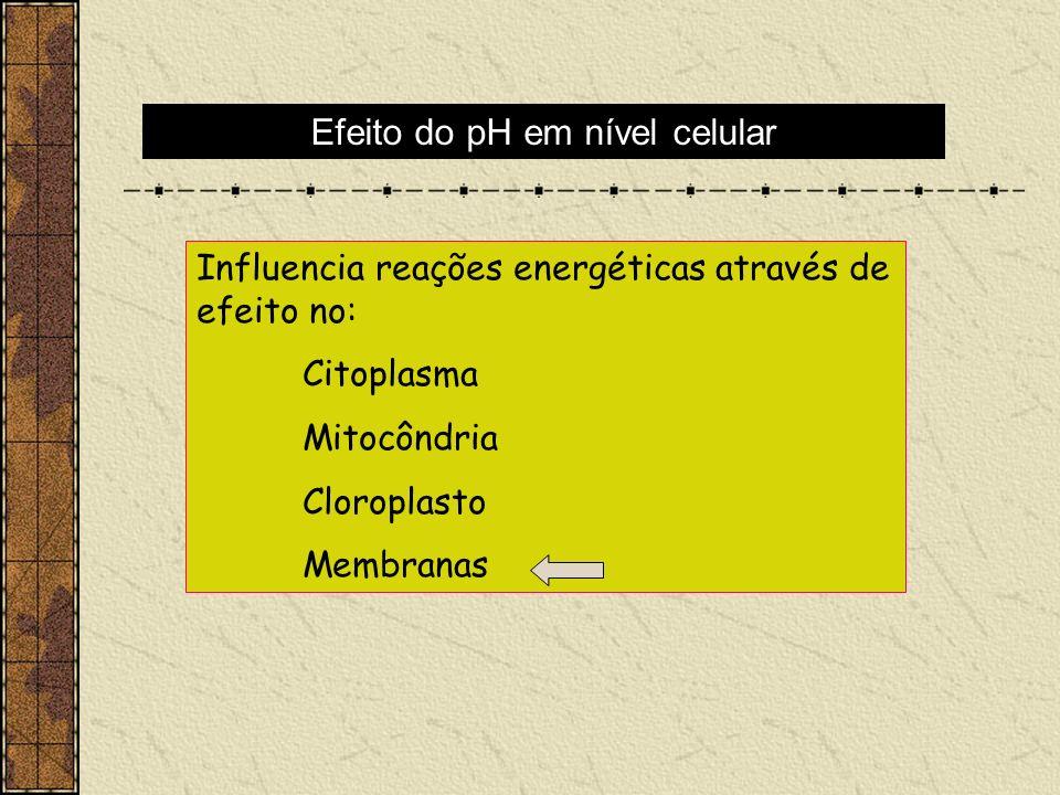 Influencia reações energéticas através de efeito no: Citoplasma Mitocôndria Cloroplasto Membranas Efeito do pH em nível celular