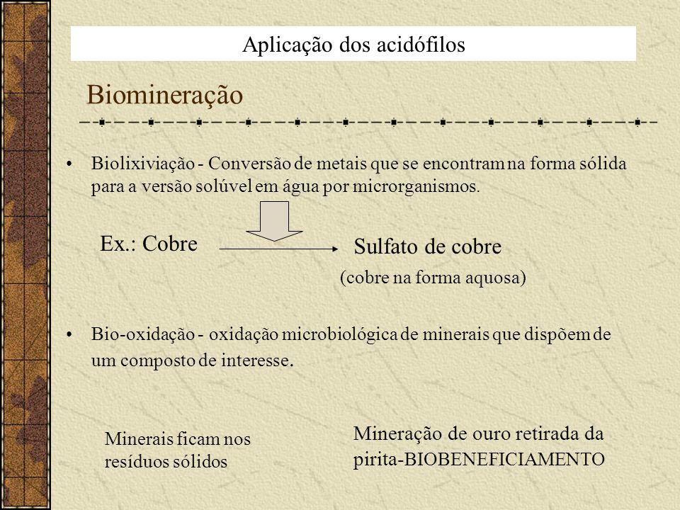 Biomineração Biolixiviação - Conversão de metais que se encontram na forma sólida para a versão solúvel em água por microrganismos. Ex.: Cobre Bio-oxi