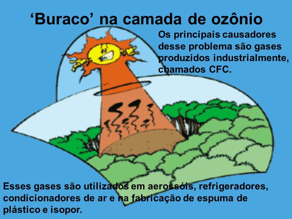 Buraco na camada de ozônio Os principais causadores desse problema são gases produzidos industrialmente, chamados CFC. Esses gases são utilizados em a