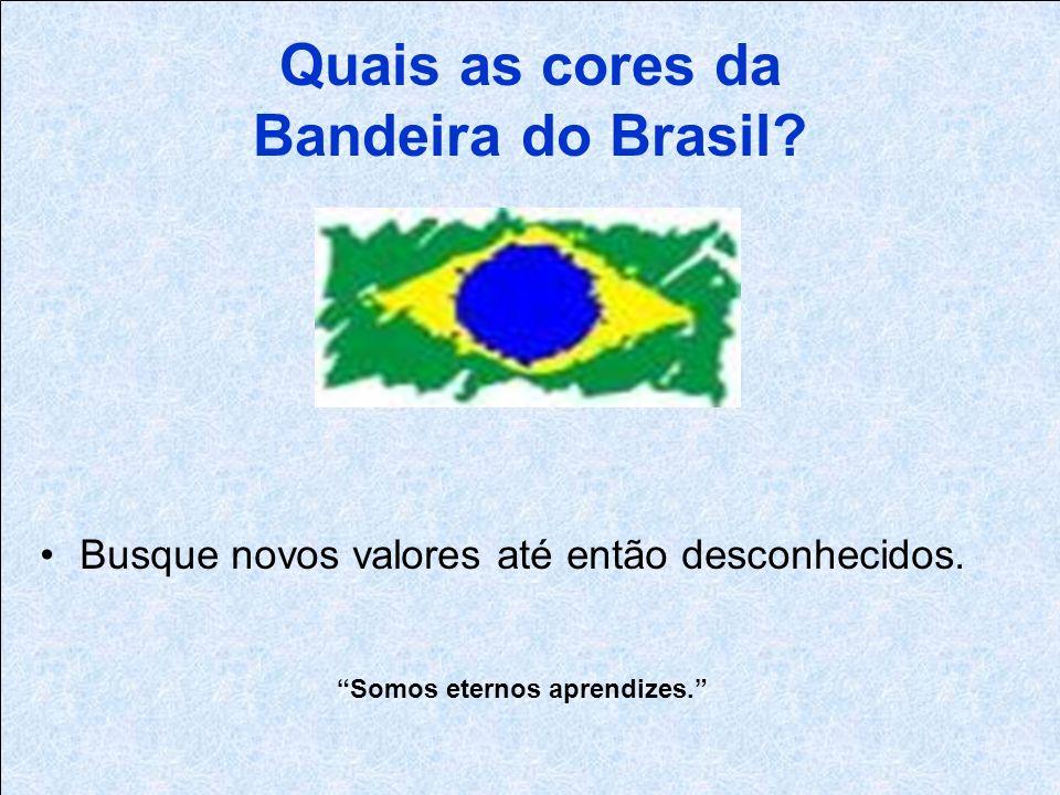 Quais as cores da Bandeira do Brasil.Busque novos valores até então desconhecidos.