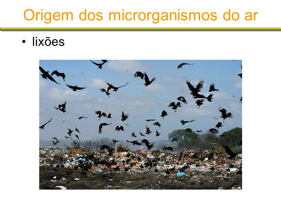 Origem dos microrganismos do ar lixões