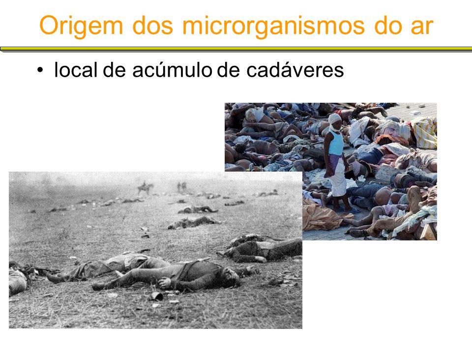 Origem dos microrganismos do ar local de acúmulo de cadáveres