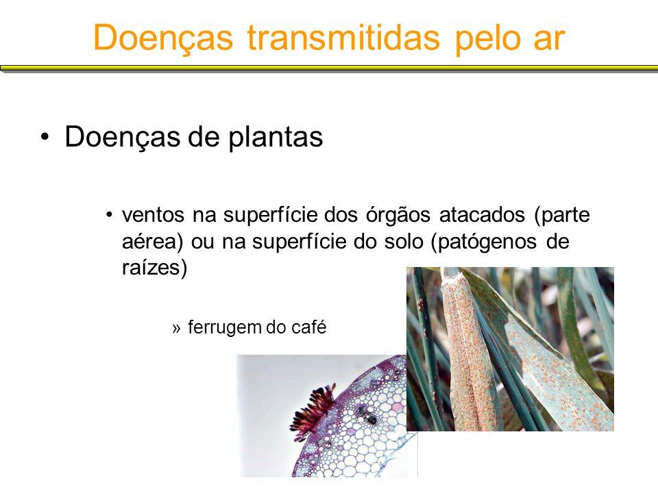 Doenças transmitidas pelo ar Doenças de plantas ventos na superfície dos órgãos atacados (parte aérea) ou na superfície do solo (patógenos de raízes)