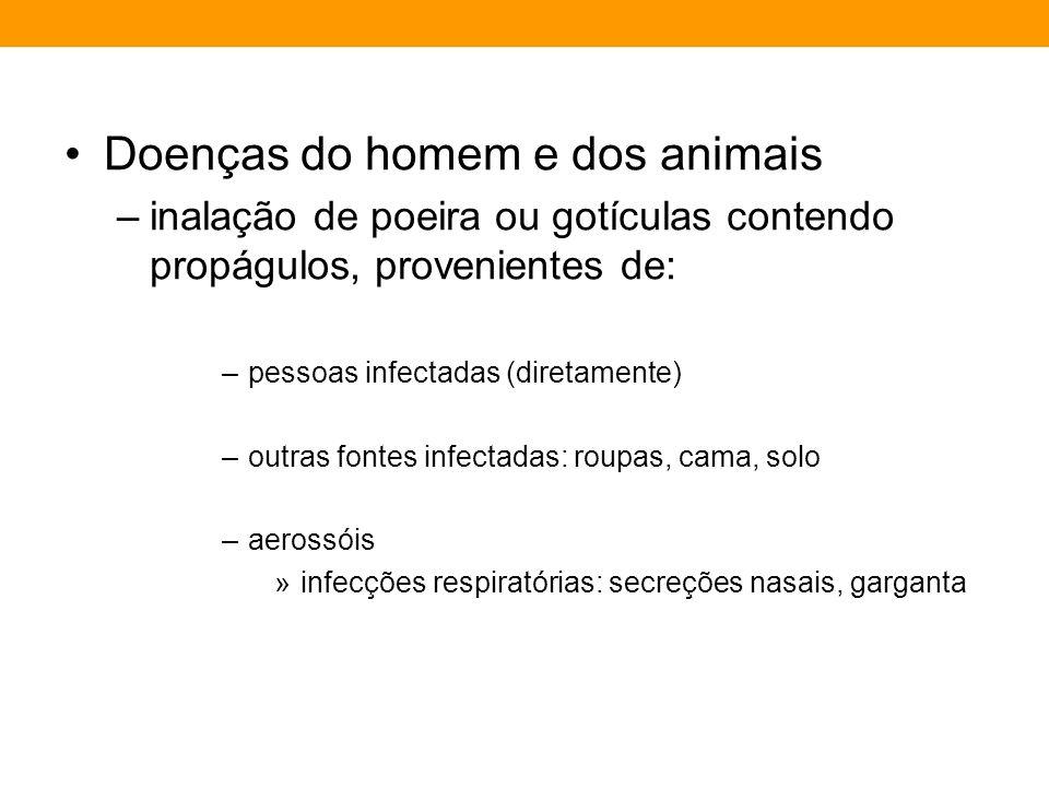Doenças do homem e dos animais –inalação de poeira ou gotículas contendo propágulos, provenientes de: –pessoas infectadas (diretamente) –outras fontes