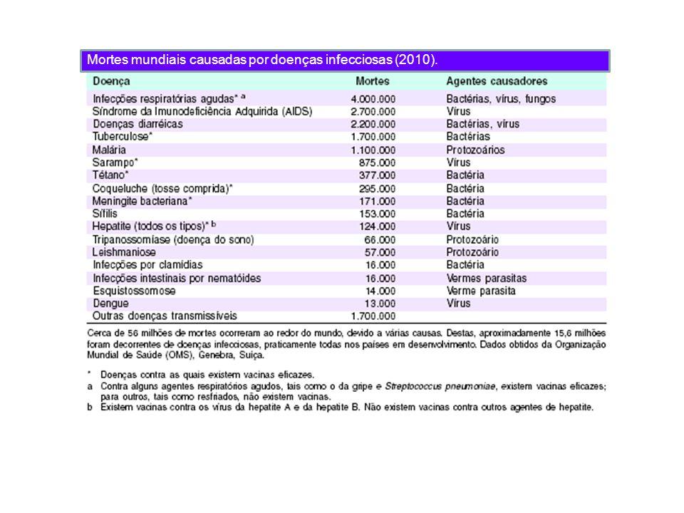 Mortes mundiais causadas por doenças infecciosas (2010).
