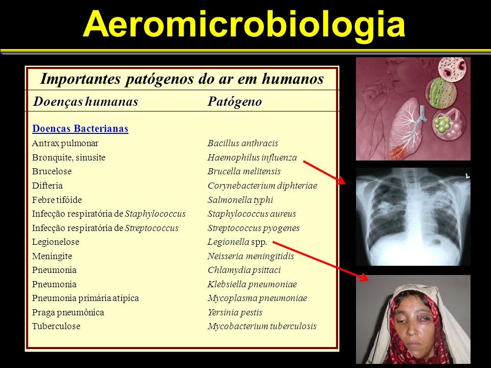 Aeromicrobiologia Importantes patógenos do ar em humanos Doenças humanas Doenças humanasPatógeno Doenças Bacterianas Antrax pulmonarBacillus anthracis