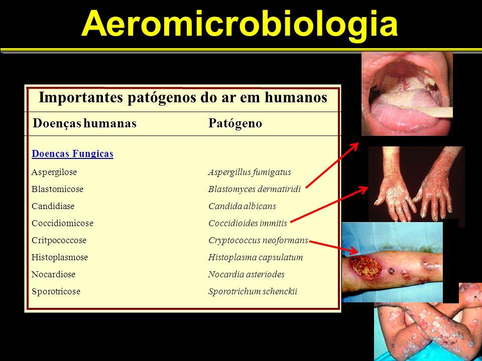Aeromicrobiologia Importantes patógenos do ar em humanos Doenças humanas Doenças humanasPatógeno Doenças Fungicas AspergiloseAspergillus fumigatus Bla