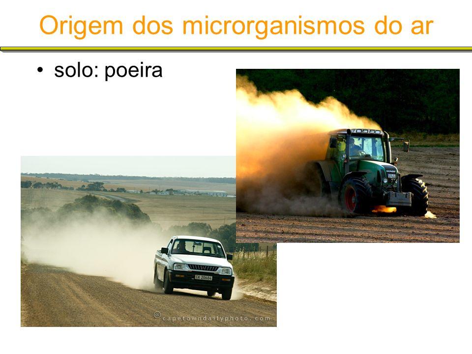 Origem dos microrganismos do ar solo: poeira