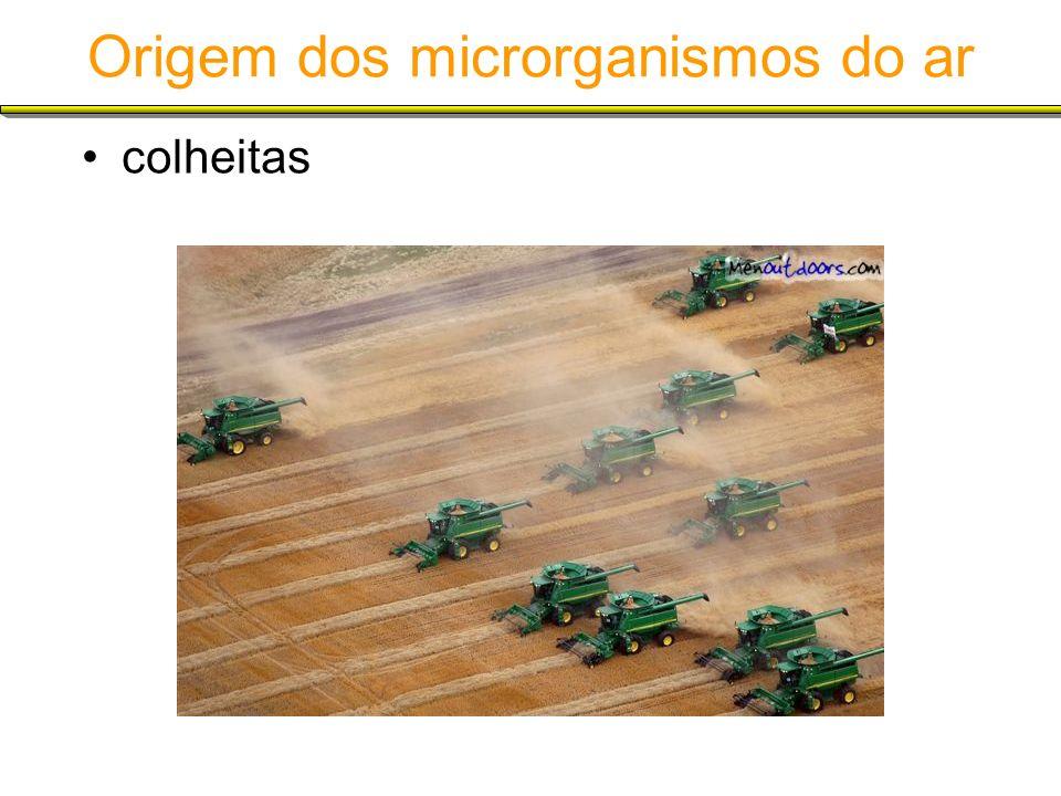 Origem dos microrganismos do ar colheitas