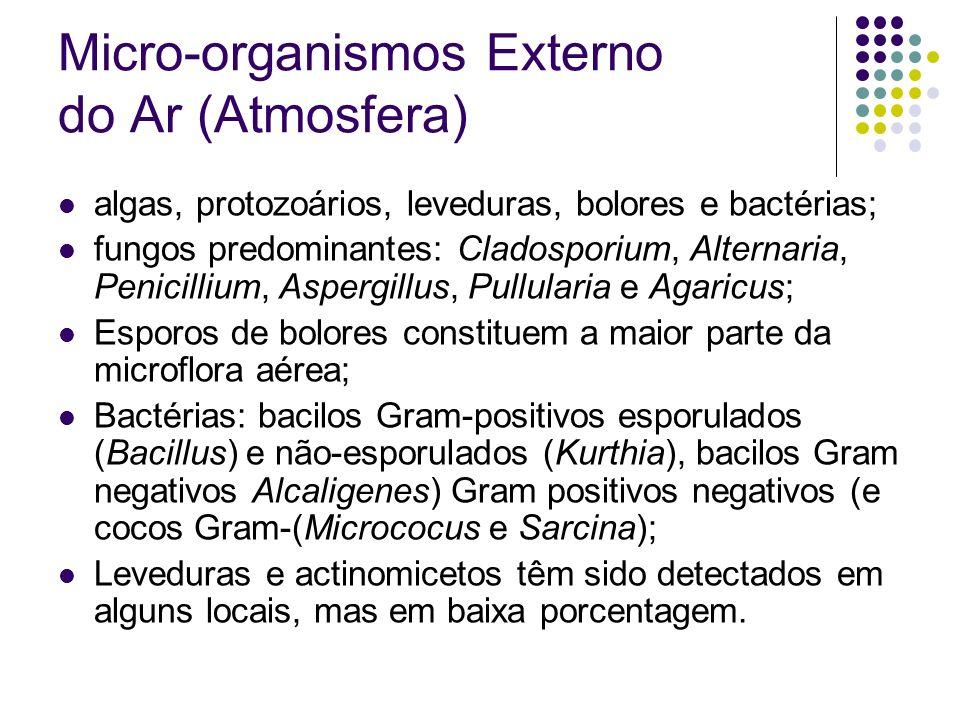 Micro-organismos Externo do Ar (Atmosfera) algas, protozoários, leveduras, bolores e bactérias; fungos predominantes: Cladosporium, Alternaria, Penici