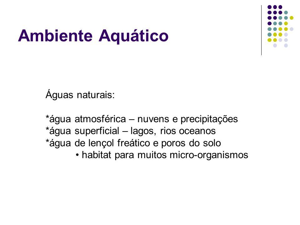 Ambiente Aquático Águas naturais: *água atmosférica – nuvens e precipitações *água superficial – lagos, rios oceanos *água de lençol freático e poros