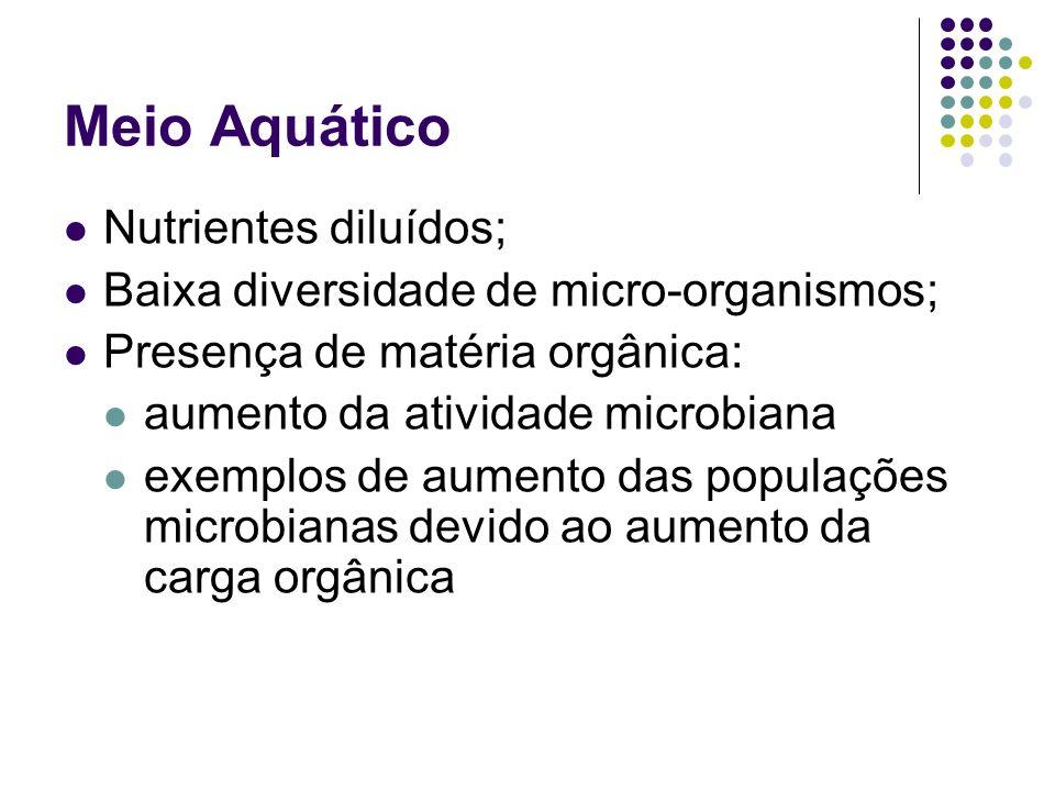 Meio Aquático Nutrientes diluídos; Baixa diversidade de micro-organismos; Presença de matéria orgânica: aumento da atividade microbiana exemplos de au