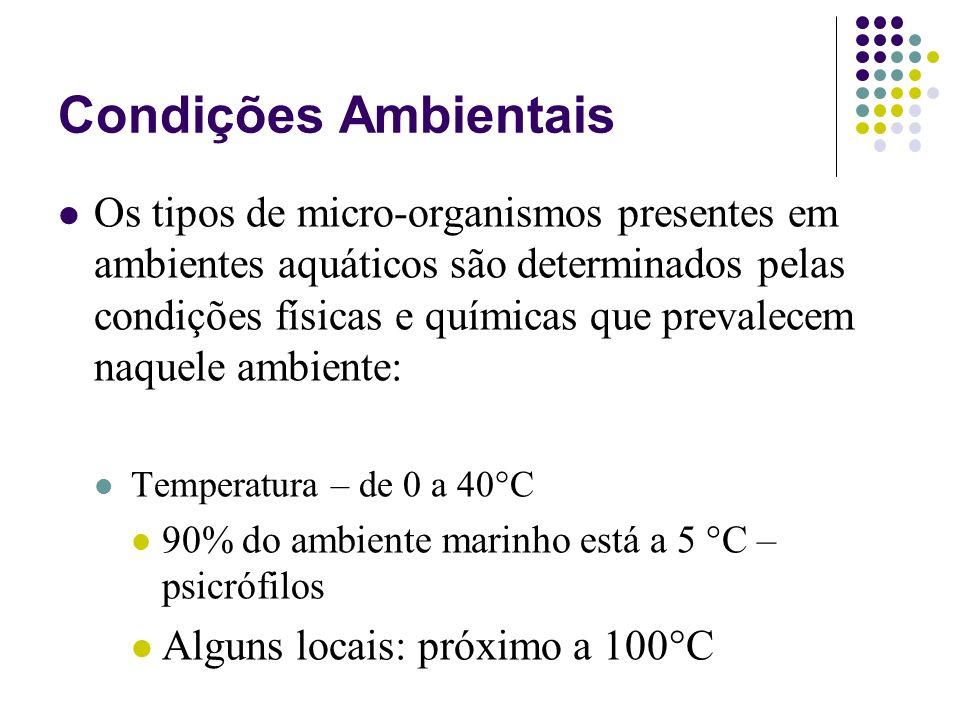 Condições Ambientais Os tipos de micro-organismos presentes em ambientes aquáticos são determinados pelas condições físicas e químicas que prevalecem