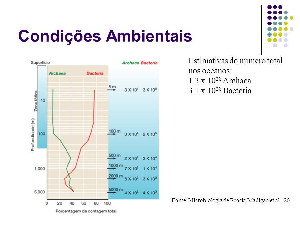 Estimativas do número total nos oceanos: 1,3 x 10 28 Archaea 3,1 x 10 28 Bacteria Fonte: Microbiologia de Brock; Madigan et al., 20