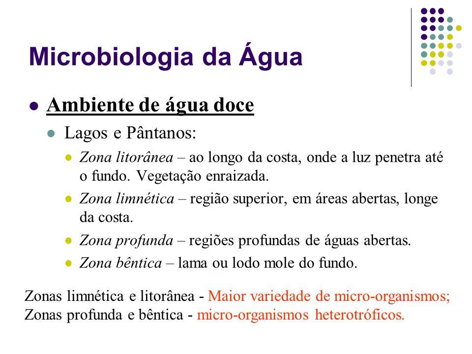 Microbiologia da Água Ambiente de água doce Lagos e Pântanos: Zona litorânea – ao longo da costa, onde a luz penetra até o fundo. Vegetação enraizada.