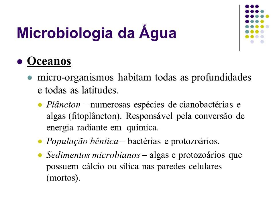 Microbiologia da Água Oceanos micro-organismos habitam todas as profundidades e todas as latitudes. Plâncton – numerosas espécies de cianobactérias e
