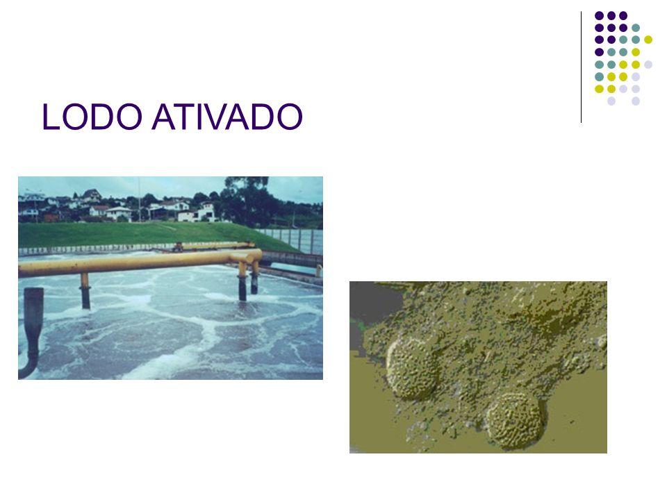 LODO ATIVADO