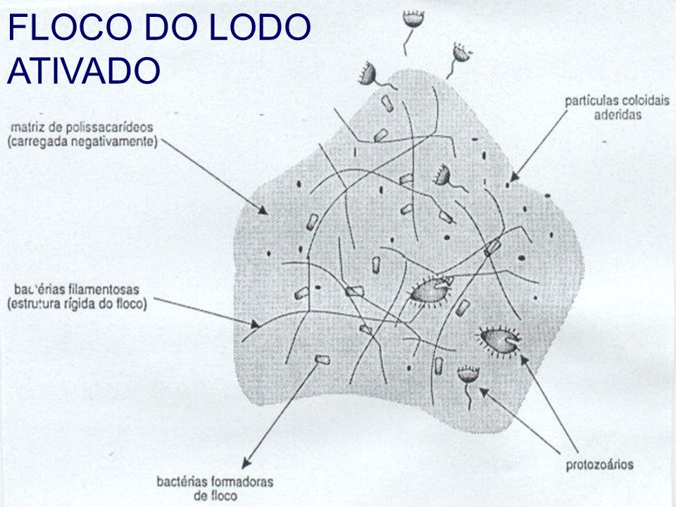 FLOCO DO LODO ATIVADO