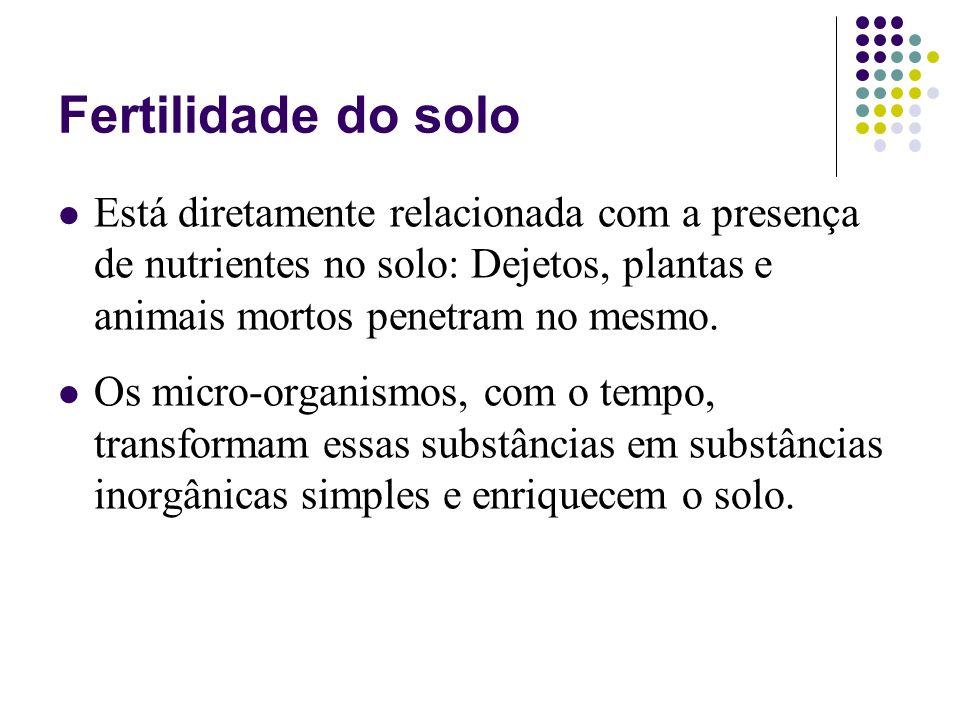 Fertilidade do solo Está diretamente relacionada com a presença de nutrientes no solo: Dejetos, plantas e animais mortos penetram no mesmo. Os micro-o